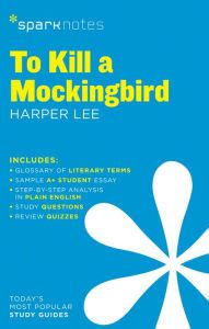 To Kill a Mockingbird: Discrimination Against Race, Gender